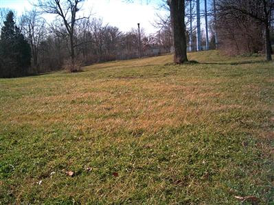 43 Magnolia Avenue, Millersburg KY 40348