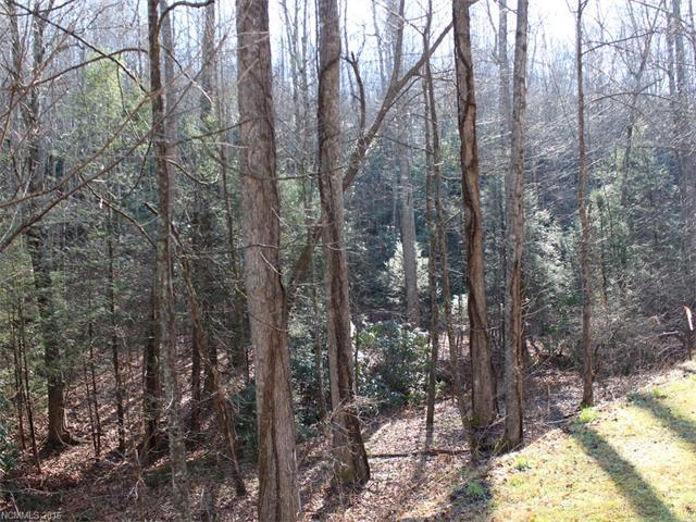 Lot 79 Catawba Falls Trail, Old Fort NC 28762