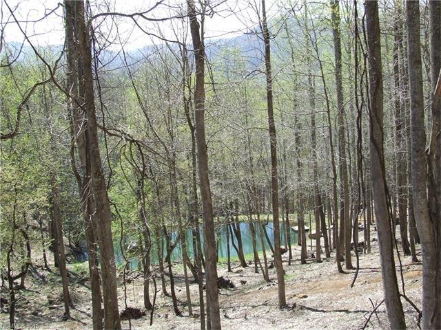 49 Bens Bend, Bakersville NC 28705