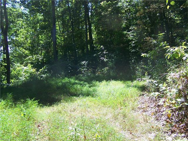 Lot 24 Running Deer Lane, Mars Hill NC 28754