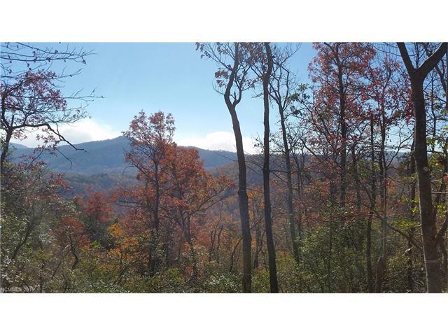 Tbd Cumberland Falls Trail # 227, Black Mountain NC 28711