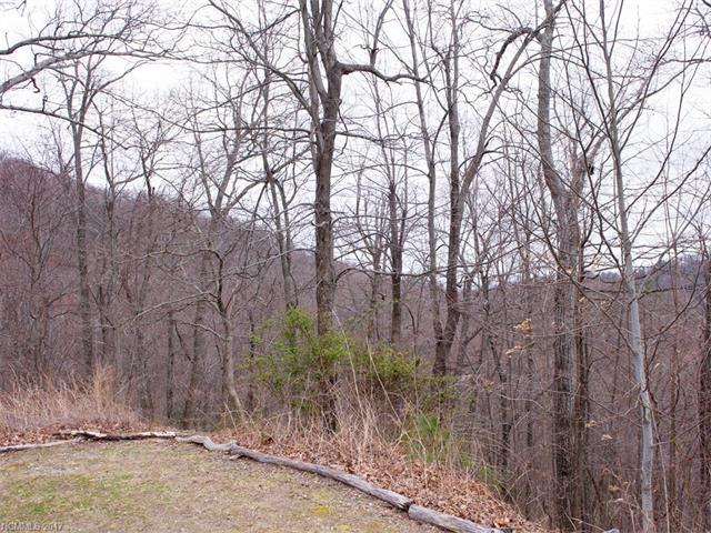 109 Ladys Fern Trail # 12, Laurel Park NC 28739