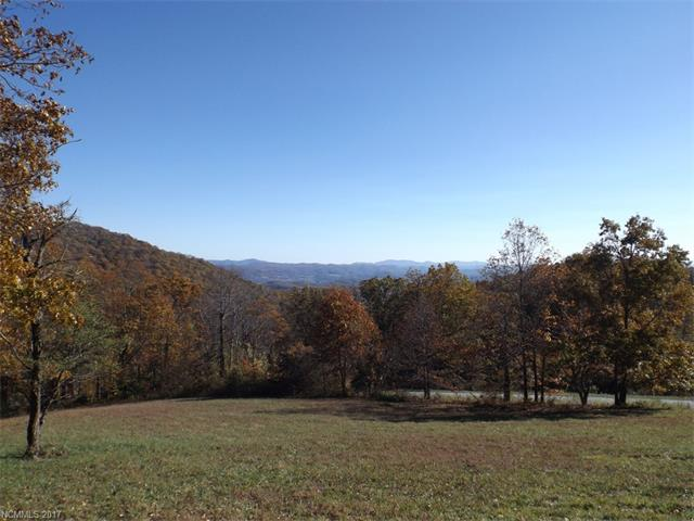 0 Autumn Sky Drive # Lot 117, Hendersonville NC 28792