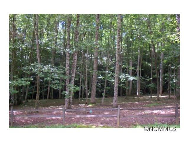 Lot 2 Brannon Forest Dr, Waynesville NC 28785
