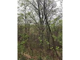 122 Hidden Meadow Drive # lot 9 Candler