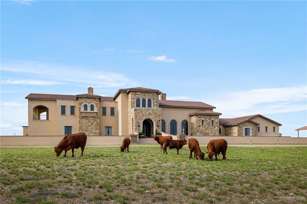 Expensive Rio Grande City Real Estate