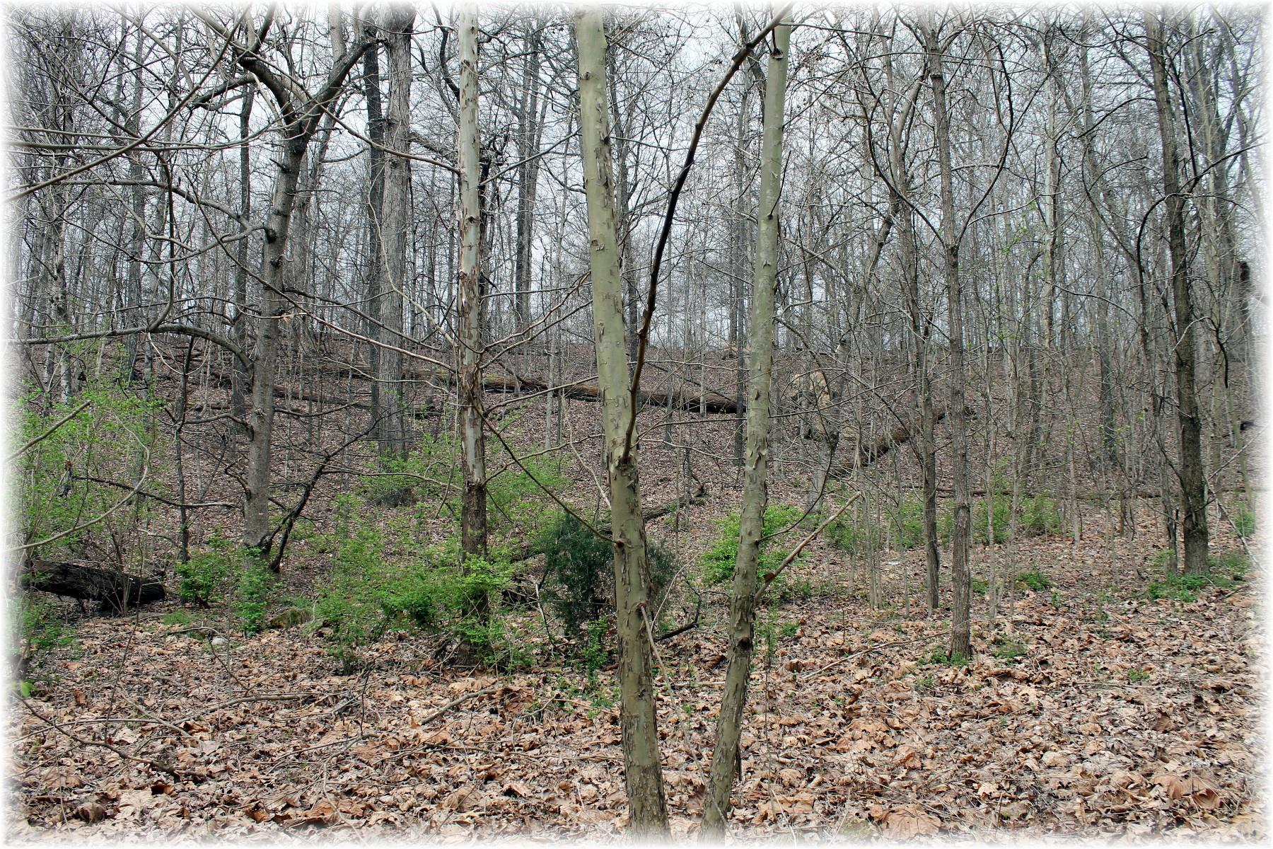 8000 Old Harding Pike, Nashville TN 37221