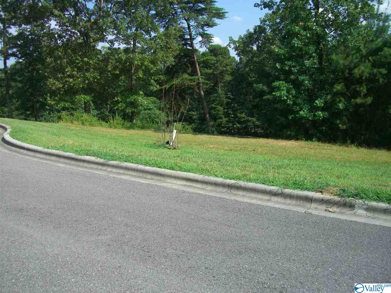 Lot 26 Paradise Place, Scottsboro AL 35769
