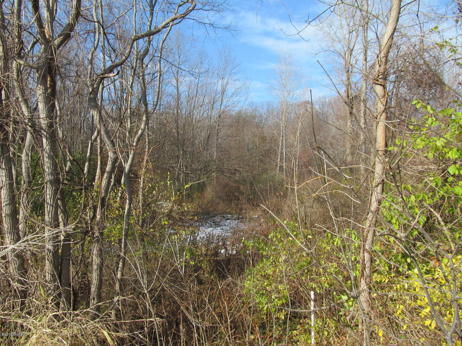 Marquette Woods Road, Stevensville MI 49127