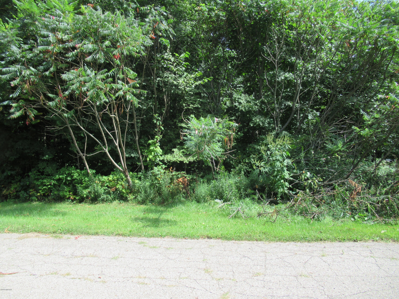 Tract 3 Deep Woods Drive, Cassopolis MI 49031