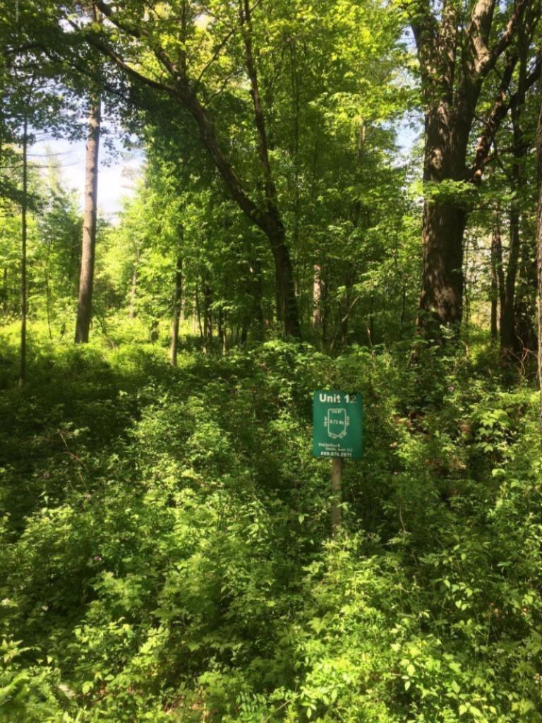 Misty Pines Lots 12 & 13, Dowagiac MI 49047