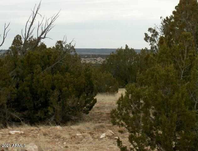 Lot 302 Chevelon Canyon Ranch --, Overgaard AZ 85933