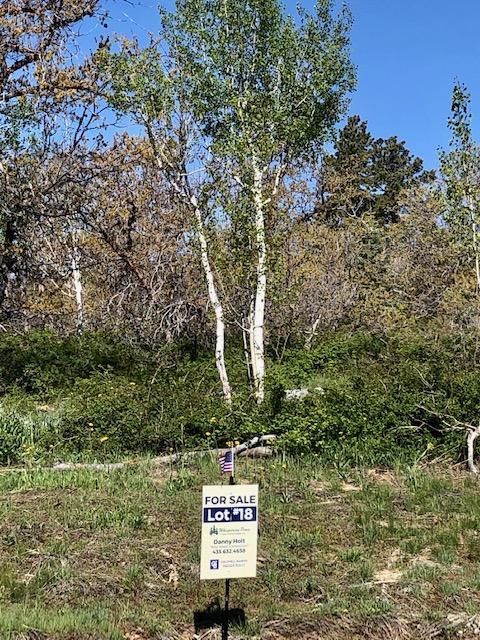 Whispering Pines Lot#18, Virgin UT 84779