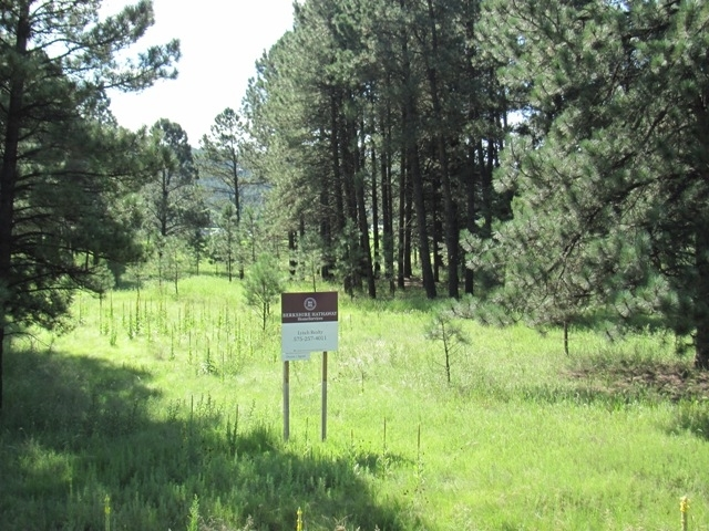 1102 Mechem Dr, Ruidoso NM 88345