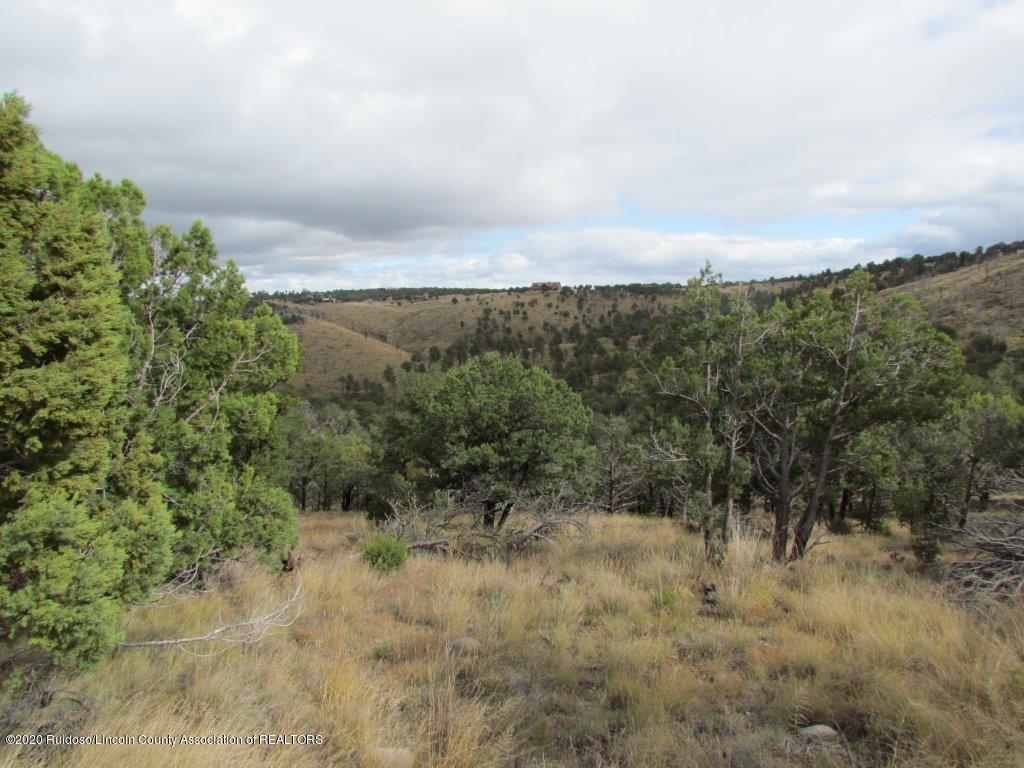 L51 Sandesta Drive, Alto NM 88312
