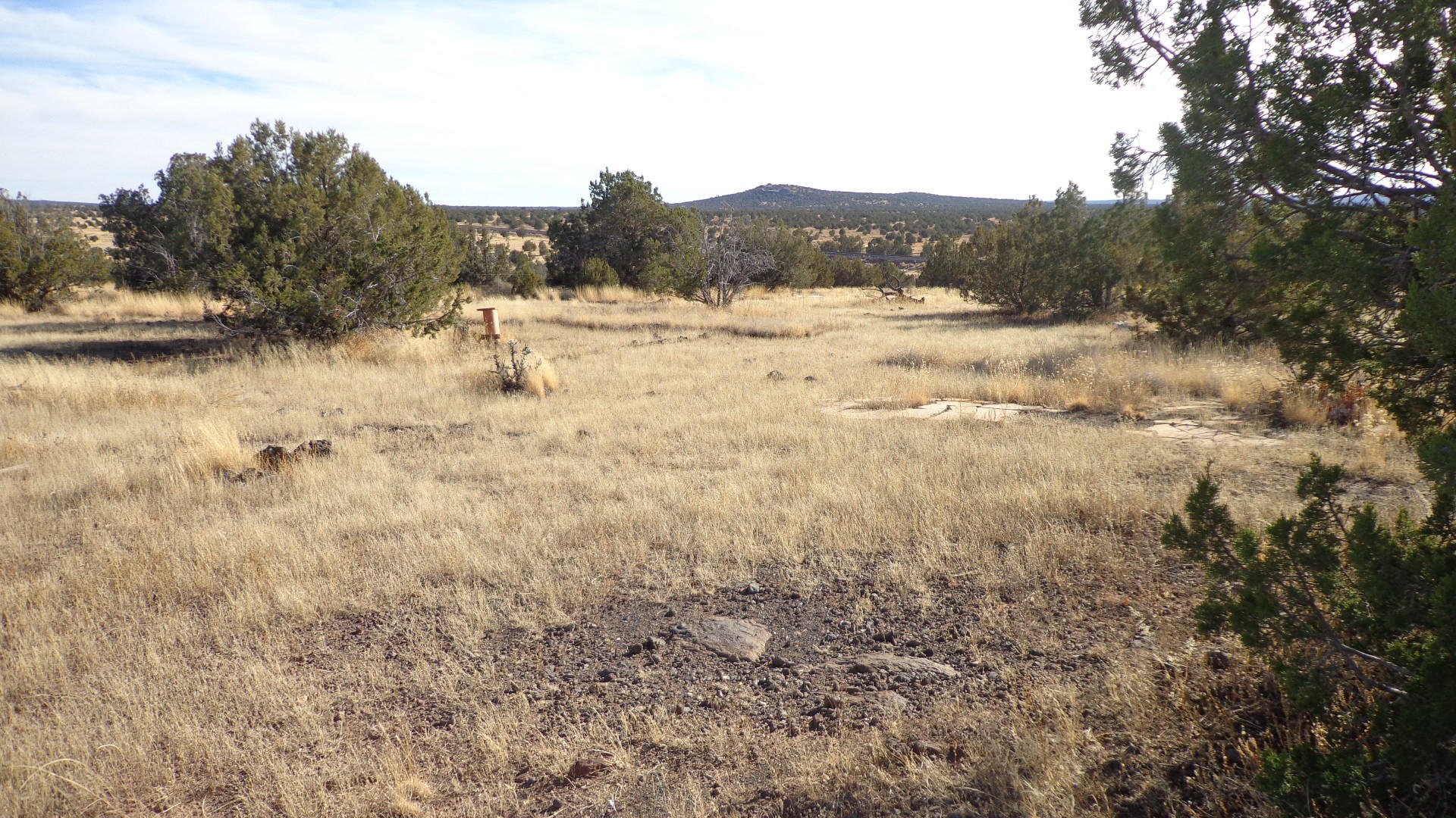 211 Juniperwood Rnch Un 3 Lot 211, Ash Fork AZ 86320