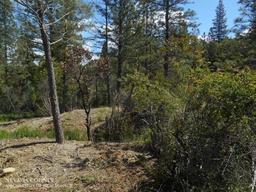 11375 Deer Creek Lane Nevada City