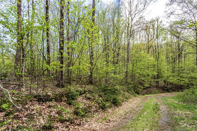 Lot 64 Big Springs Trail # 64, Qualla NC 28719