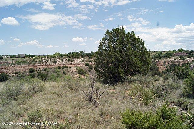 0 Michael Ln Amarillo, TX - Image 3