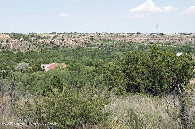 0 Michael Ln Amarillo, TX - Image 4