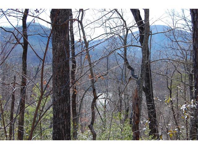 37 & 40 Deer Trail # 37&40, Lake Lure NC 28746