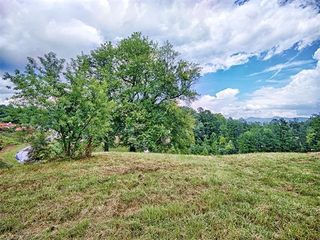 35 Magnolia Farms Drive # 5, Asheville NC 28806
