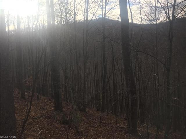 1153 Standing Deer Trace, Arden NC 28704
