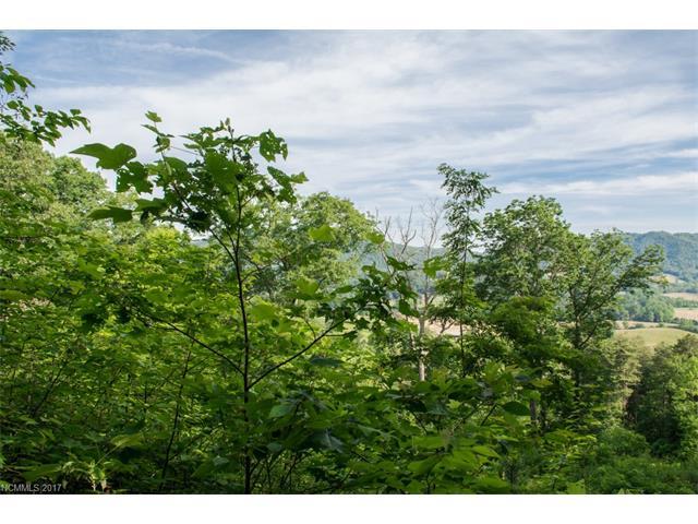 296 Hilltop View Drive, Fletcher NC 28732