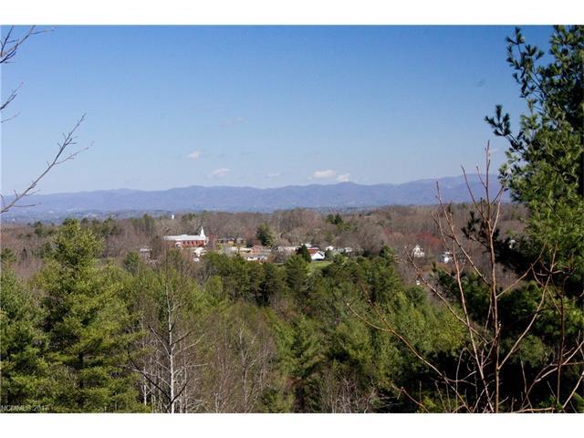 91 Magnolia Farms Drive, Asheville NC 28806