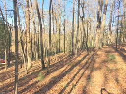 30 Dividing Ridge Trail # 4 Arden