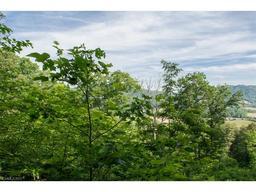 296 Hilltop View Drive Fletcher