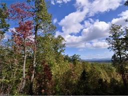 1907 Tree View Trail # Lot 154 Arden