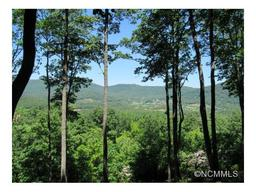 303 Secluded Hills Lane # Lot 63 Arden